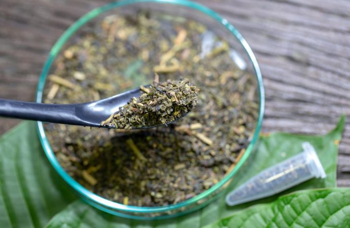 The U.S. May Ban Kratom. But Are its Effects Deadly or Lifesaving?