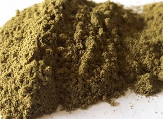 Here's what you should know about kratom — the controversial opioid-like plant