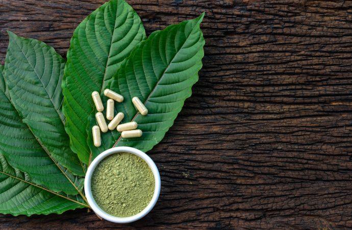Some Benefits Of Kratom Powder