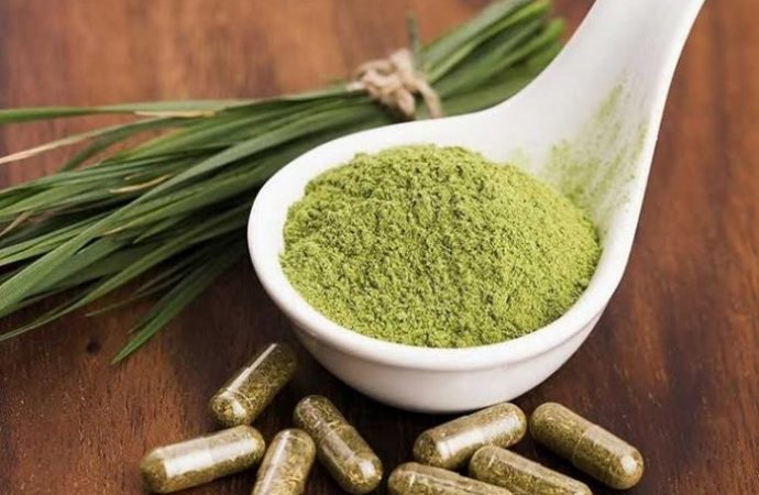 What Kratom Color is the Strongest – 2020 Guide