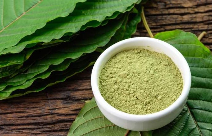 What is kratom: Nutrition facts, uses and side-effects